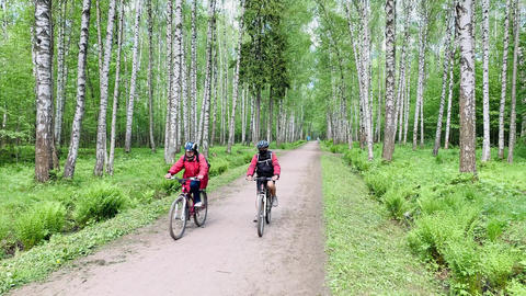Two cyclists in bright clothes and helmets go on a path in the wood, spring in a Acción en vivo