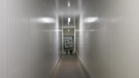 Two men in white special suits move through a white gloomy corridor. Two Live Action