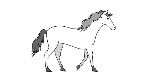 Walking white horse Animation
