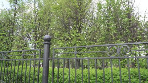 Iron fence of a city park ライブ動画