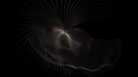 Shapes from fine curves Animation