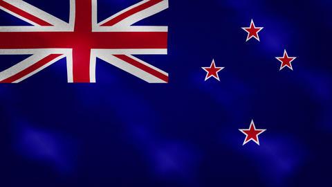 New Zealand dense flag fabric wavers, background loop Animation