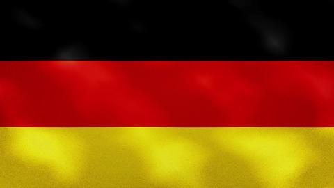 German dense flag fabric wavers, background loop Animation
