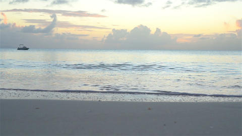 Amazing beautiful sunset on an exotic caribbean beach Live Action