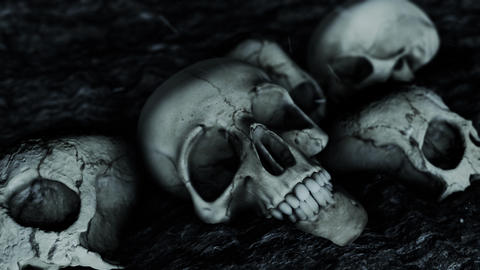 Ancient Pile of Human Skulls on the Ground Live Action