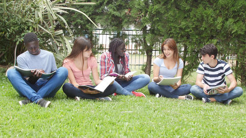 Multi ethnic teenagers group seated on the garden making school tests Live Action