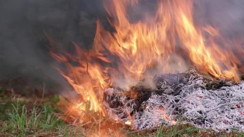 Fire takibi V1-0001 Footage