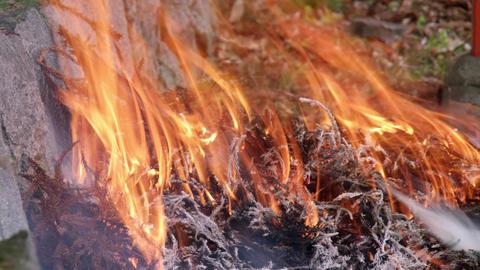 Fire takibi V1-0003 Footage