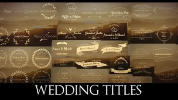 44 Wedding Titles Lower Third After Effects Projekt