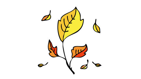 autumn leaf with orange and golden foliage framed for a collection of leaves from a retired gardener Animation