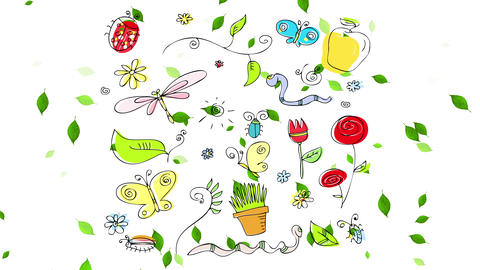 rustic nature pattern with retro style sketchy insects flowers and branches on a frame creating Animation
