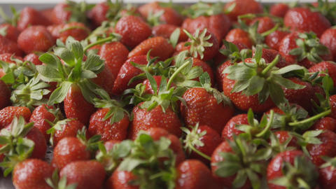 A close-up of a red ripe juicy strawberry slow falls one by one on a tray with Live Action