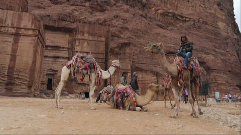 Bedouin camel rider in canyon of Petra Footage
