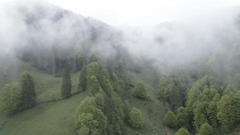 Fog in the mountains. Slow motion. Carpathian mountains. Ukraine. Aerial. Gray Live Action