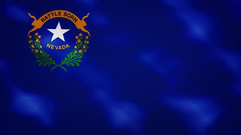 Nevada dense flag fabric wavers, background loop Animation