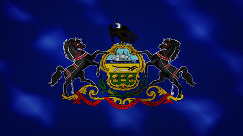 Pennsylvania dense flag fabric wavers, background loop Animation