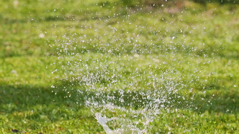 beautiful fountain slow motion garden water sprinkler watering green lawn in spring Live Action