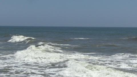 Wild sea Footage