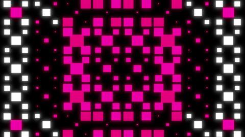 Neon animation vj loop 1 Animation