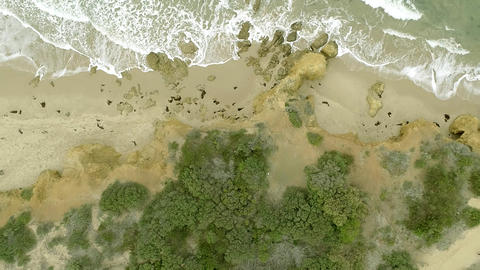 Bird's eye view of a beautiful beach in australia, Sea waves on the beautiful beach aerial view Live Action