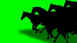 ANIMATED GALLOPING HORSES Animated galloping horses.Hand drawn animation Animation