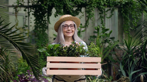 Attractive happy satisfied senior female gardener in glasses and hat dressed in Live Action