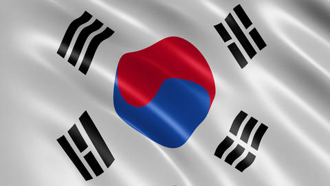 The flag of South Korea waving in the wind Animation