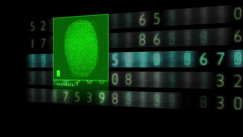Fingerprint scan results in successful match Animation Animation