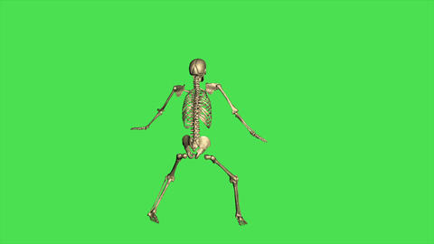 Skeleton Baseball Lead - Separate On Green Screen Animation