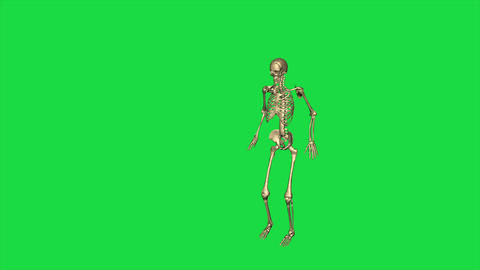 Skeleton Jump Leap - Separate On Green Screen Animation