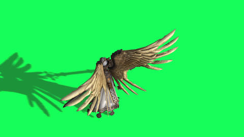 animation of Angel of death with swords in hands on the green screen Animation