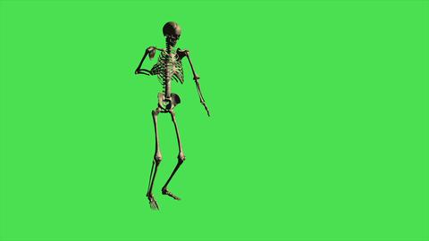 Skeleton Walking Hurt - Separate On Green Screen Animation