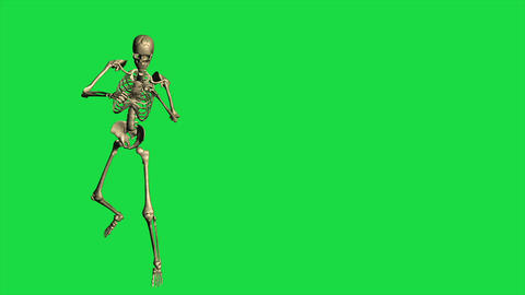 Skeleton Boxing - Separate On Green Screen Animation