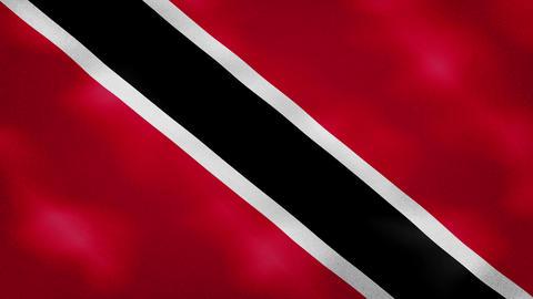 Trinidad and Tobago dense flag fabric wavers, background loop Animation