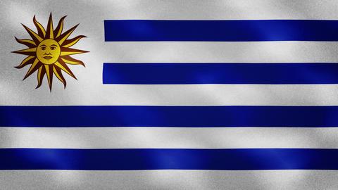 Uruguayan dense flag fabric wavers, background loop Animation