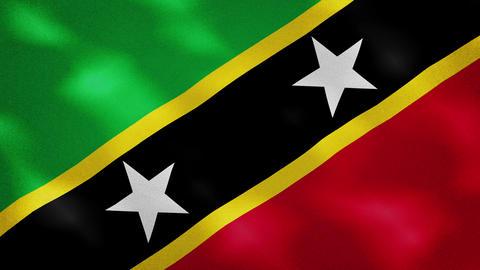 Saint Kitts and Nevis dense flag fabric wavers, background loop Animation
