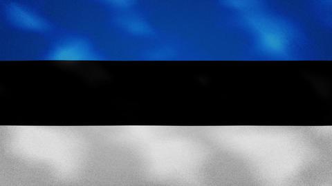 Estonian dense flag fabric wavers, background loop Animation