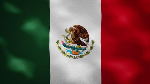 Mexican dense flag fabric wavers, background loop Animation
