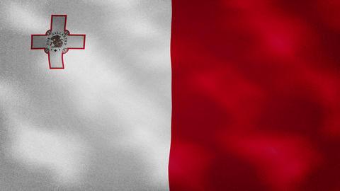 Maltese dense flag fabric wavers, background loop Animation