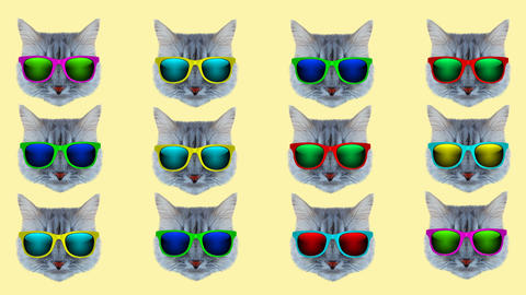 Cat style wiggle moving color background Animation