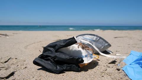 Marine crab on Medical Waste pollution,COVID-19.Discard on sea shore,coronavirus Live Action