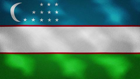 Uzbekistan dense flag fabric wavers, background loop Animation
