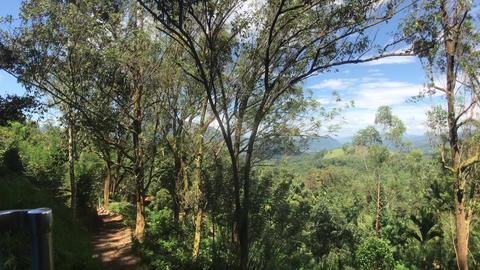 Ella, Sri Lanka, mountain scenery by road Live Action