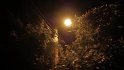 Illuminated street lamp post on dark street Live Action