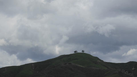 Time lapse of a developing storm over two trees above Ventura, California Footage
