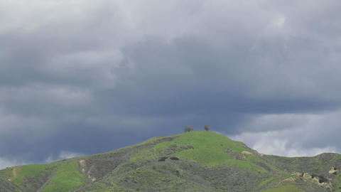 Time lapse of a developing storm over two trees above... Stock Video Footage
