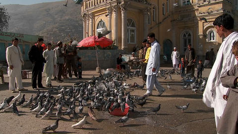 Pigeons fly in front of the Shah-e Do Shamshera Mosque in... Stock Video Footage