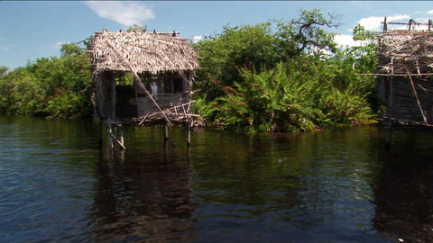Thatched-roofed homes on stilts stand in a tropical river area Footage