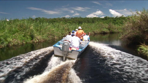 A tourist motorboat travels through a wetland river area Stock Video Footage