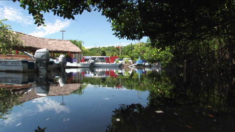 Upscale boats tied in docks in a wetland river area Stock Video Footage